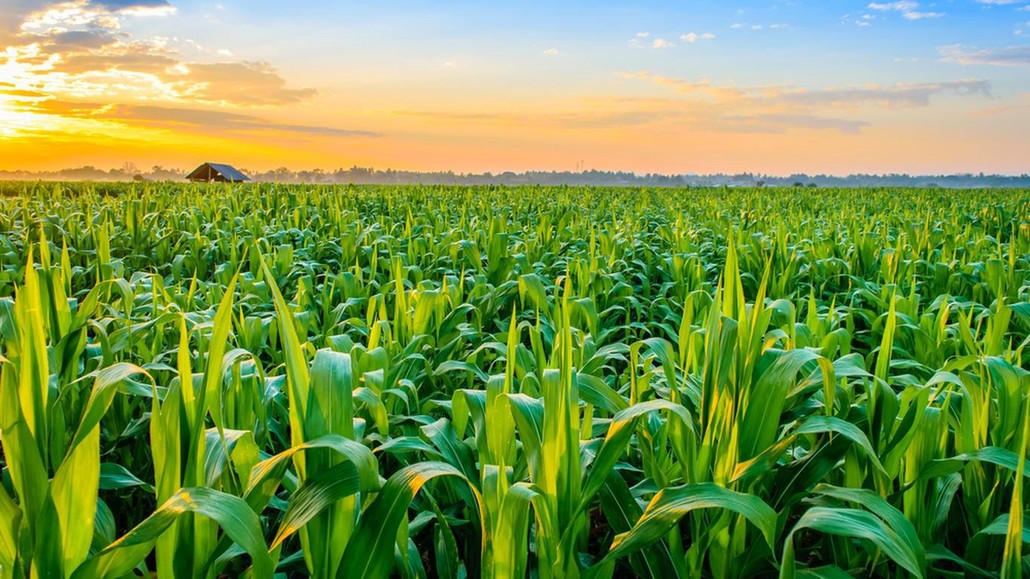 Blockchain Technology is a big step towards integrating Smart Farming in agricultural firms